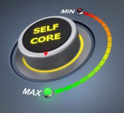 Self-Core